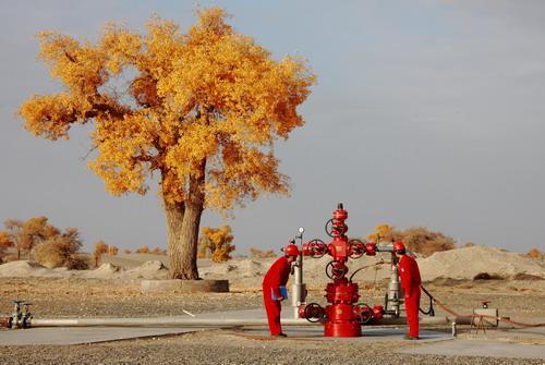塔里木油田哈得作业区挖掘老井潜能--中国石油新闻