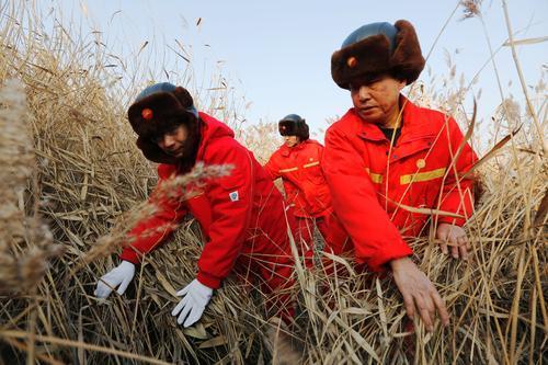 冀东油田油气集输公司升级管道巡护属地管理